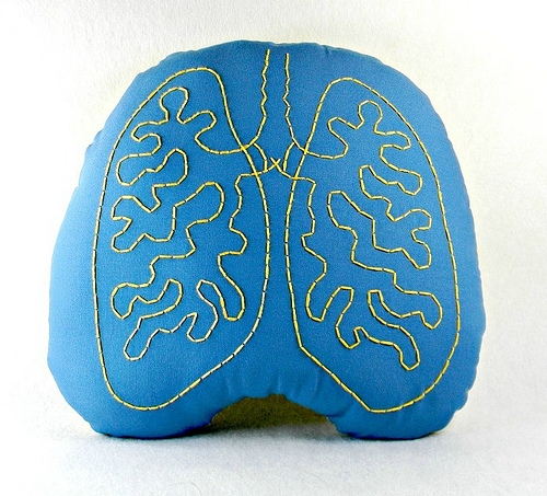 Handmade Embroidered Anatomical Lungs Pillow