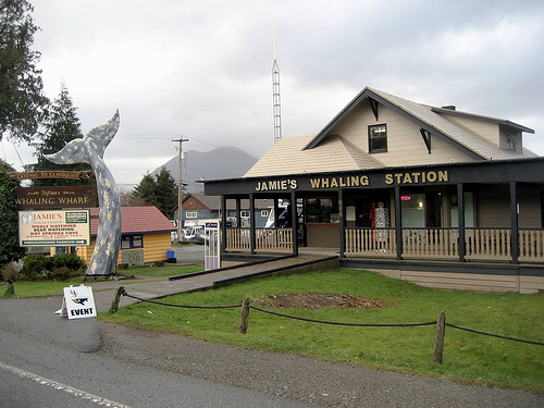 Jamie's Whaling Station