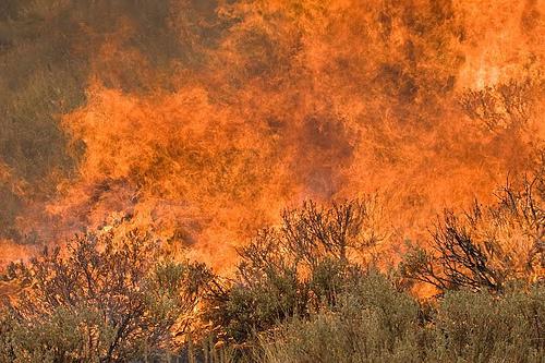 Castle Rock wildfire