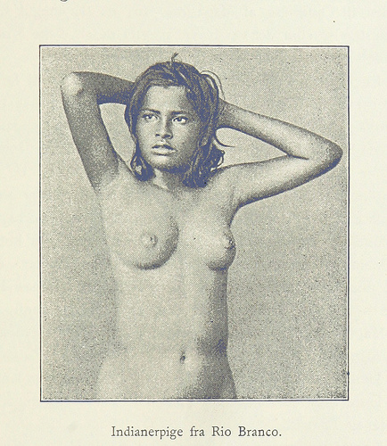 Image taken from page 105 of 'Amazonfloden. Erindringer og Skildringer. [With illustrations.]'